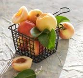 在桌夏天果子光窗口的桃子杏子 免版税库存照片