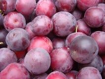 在桌安置的新鲜的成熟李子在市场上 在堆的有机红色李子果子在地方农夫市场上 李子背景 库存照片