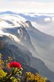 在桌山的壮观的日落 库存图片