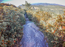 在桌岩石山nc顶部的风景视图 库存照片