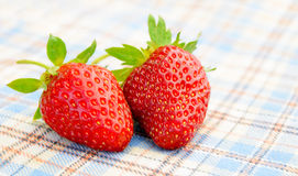 在桌布的新鲜的甜草莓 免版税图库摄影