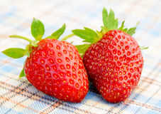 在桌布的新鲜的甜草莓 免版税库存照片