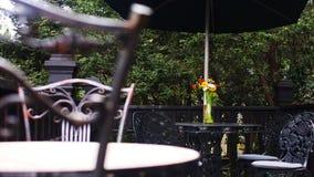 在桌的另一边的五颜六色的雏菊 免版税库存图片