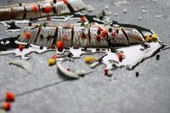 鲱鱼 免版税库存图片