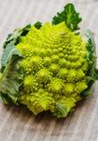Romanesco花椰菜 库存图片