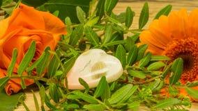 在桔子的花束与一朵红色玫瑰 免版税库存图片