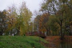 在桥梁池塘间 免版税图库摄影