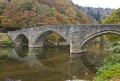 在桥梁河间 库存照片