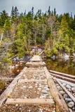 在桥梁河间 免版税库存图片