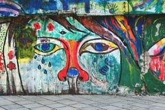 在桥梁的墙壁上的街道画在大教堂旁边的, Bratis 免版税图库摄影