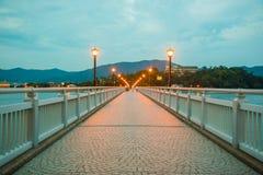在桥梁的夜光 免版税库存照片