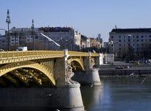 在桥梁的生活 免版税图库摄影