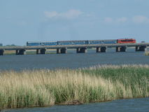 在桥梁的蒂萨河tà ³自然储备区域桥梁红色机车驾驶的火车 库存图片