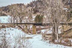 在桥梁的铁路桥梁 免版税库存照片