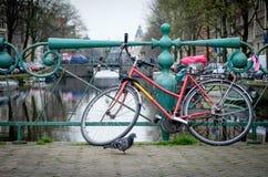 在桥梁的阿姆斯特丹自行车 免版税库存图片