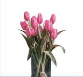 在桶版本2的白色背景隔绝的桃红色郁金香春天花束  免版税库存图片