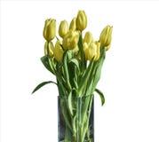 在桶版本3的白色背景隔绝的黄色郁金香春天花束  免版税图库摄影