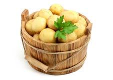 在桶的土豆 库存图片