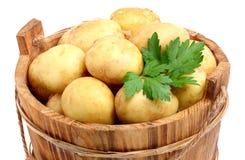 在桶的新,未加工的土豆 库存图片