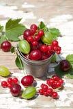 在桶的甜莓果 库存照片