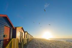 在梅曾贝赫的五颜六色的海滩小屋在开普敦,南非附近靠岸 免版税库存照片
