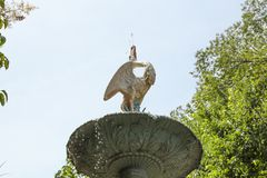 在梅里克玫瑰园的喷泉上面 库存照片