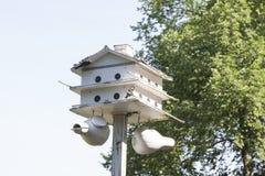 在梅里克玫瑰园的鸟舍 免版税库存图片