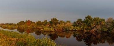 在梅里特岛全国野生生物保护区的金黄小时,佛罗里达 免版税库存图片