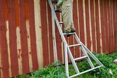 在梯子油漆庭院房子墙壁上的Housepainter人 图库摄影