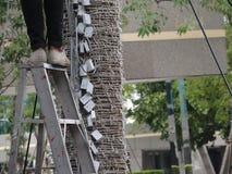 在梯子的不安全的步 免版税图库摄影