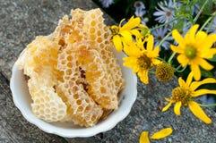 在梳子的自然蜂蜜 图库摄影