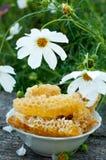 在梳子的自然蜂蜜 免版税库存图片