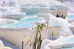 水在棉花堡,土耳其的石灰华水池 库存照片
