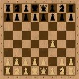 在棋的第一步 库存照片