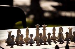在棋盘的棋子 库存图片