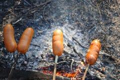 在棍子串起的香肠烤在煤炭 库存图片