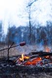 在棍子的香肠在火烤了 免版税库存照片
