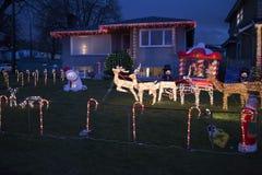 在棒棒糖的驯鹿和雪橇操刀了草坪 库存照片