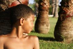 在棕榈下的男孩 库存图片