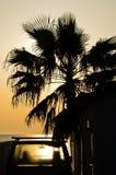 在棕榈下的老汽车在海滩的夏天日落 库存图片