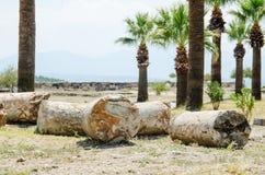 在棕榈中的古老废墟 库存照片