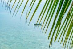 在棕榈叶小船后在海 库存照片