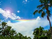在棕榈庭院的阳光清楚的天空彩虹 免版税图库摄影