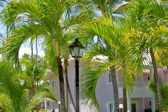 在棕榈树中的旅馆 库存照片