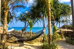 在棕榈树之间的空的吊床在热带海滩 库存图片