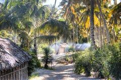 在棕榈树之间的非洲村庄在Tofo 免版税库存图片