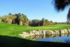 在棕榈树和池塘和绿色的围拢的绿色看法后美好的高尔夫球孔在棕榈泉,加利福尼亚 库存图片