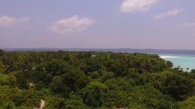 在棕榈树海岛上 免版税图库摄影