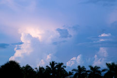 在棕榈树的各种各样的云彩形成在日落 免版税库存照片