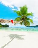 在棕榈树的圣诞节帽子在热带海洋海滩 免版税库存图片